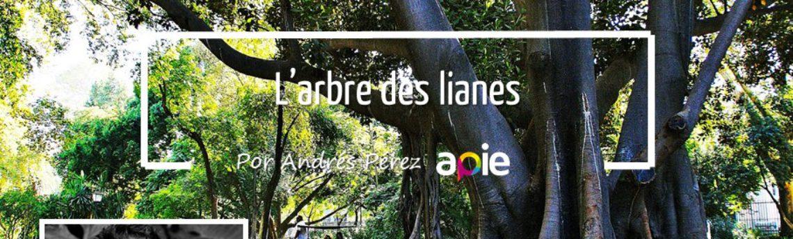 L'arbre des lianes