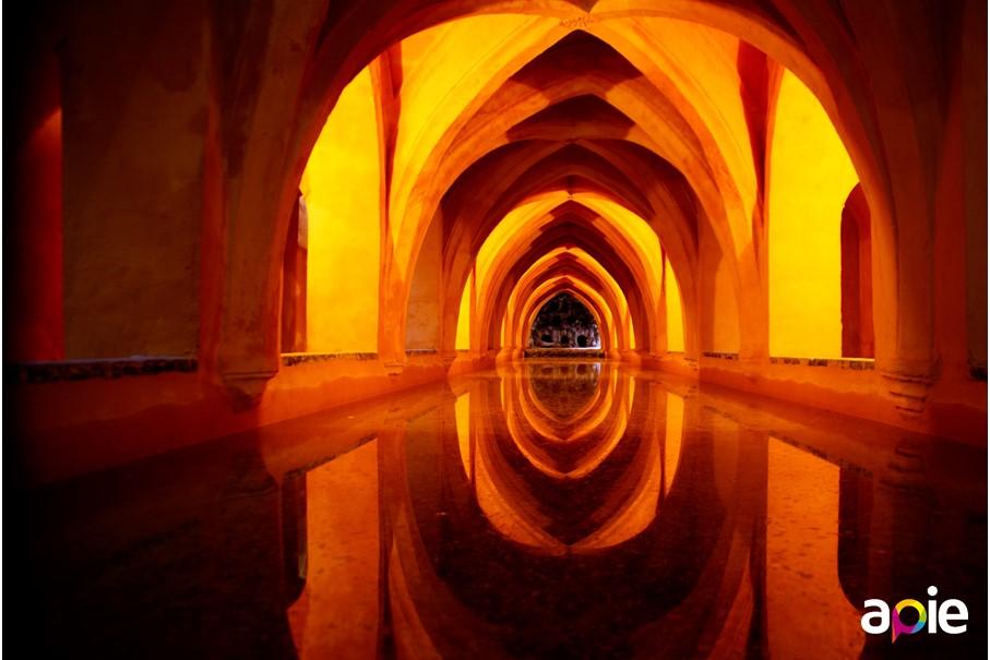Visita guidata dei Reales Alcázares di Siviglia